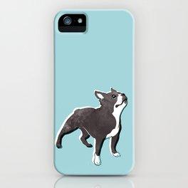 Boston Terrier 2 iPhone Case