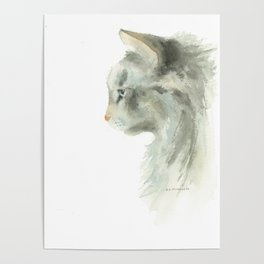 lynx point siamese cat Poster