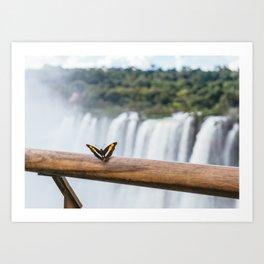 Butterfly over Iguazu Falls, Argentina Art Print
