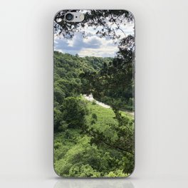 Whitewater Canyon iPhone Skin