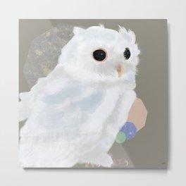 White Owl and Geometry Metal Print