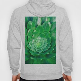 Botanical Gardens - Succulent #686 Hoody