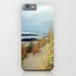 Killarney Coastline iPhone Case