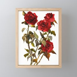 Burgundy Red Roses, deep red floral olive green dark red design roses from garden Framed Mini Art Print