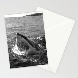 Great white shark, Carcharodon carcharias, in black and white Stationery Cards