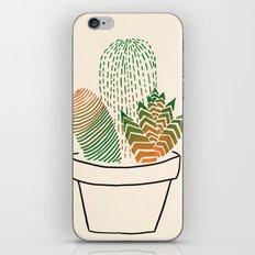 Succulent Study iPhone & iPod Skin