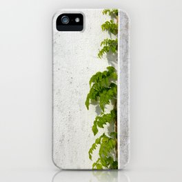 Wisteria climbing plastered wall iPhone Case