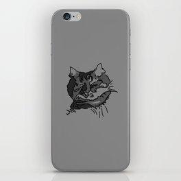 Cat Zzz 2 iPhone Skin