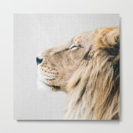 Lion Portrait - Colorful Metal Print