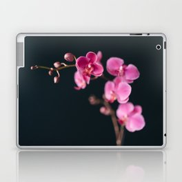 Orchid Song Laptop & iPad Skin