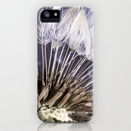 Extreme Macro Image of a Dandelion Seed Head iPhone Case