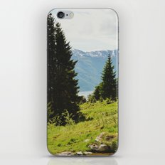 the forest and the fjords iPhone & iPod Skin