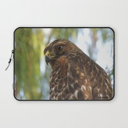 Young Red-Shouldered Hawk in a Desert Willow Laptop Sleeve