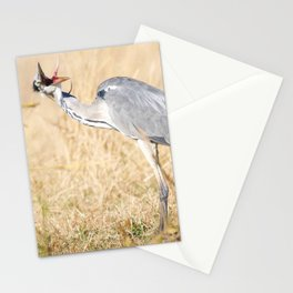 When you don like photographers, bird version Stationery Cards