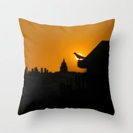 Pigeon Eclipse2 Throw Pillow