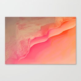Pink Navel Canvas Print