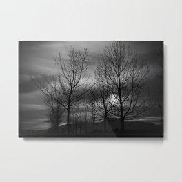 B&W Landscape Metal Print