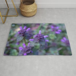Red Clover Rugs For Any Room Or Decor
