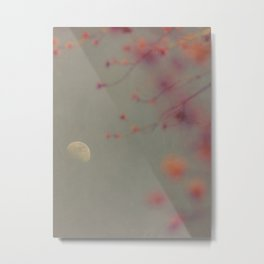 Moon in the Mist Metal Print