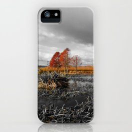 A Moody Winter's Day iPhone Case