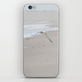 Terns iPhone Skin