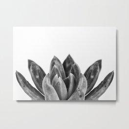 nature cactus macro Metal Print