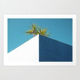Cactus blue white Art Print