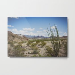 Mule Ears in Big Bend National Park, Texas Metal Print