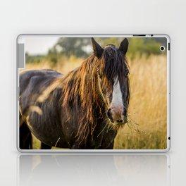 Autumn Horse Laptop & iPad Skin