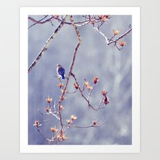 A Bluebird for Isabelle Art Print