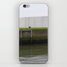 By the water iPhone & iPod Skin