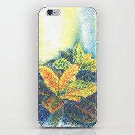 Сolorful Leaves iPhone Skin