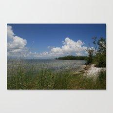 Sandiest cover photo material  Canvas Print