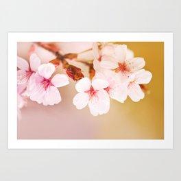 Blooming fairy cherry tree Art Print