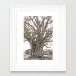 Baobab Tree- Ghana Framed Art Print