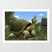 tortoise Art Prints featuring Tortoise by Andrew McIntosh