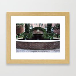 The Lion Fountain Framed Art Print