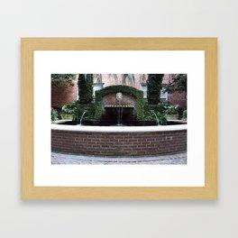 The Lion Fountain Framed Art Print