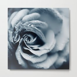 Rose - powder blue Metal Print