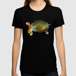 Fruit Sulcata T-shirt