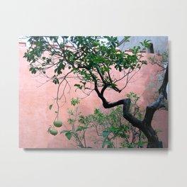 Spanish Garden Metal Print
