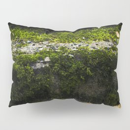 Mossy steps Pillow Sham