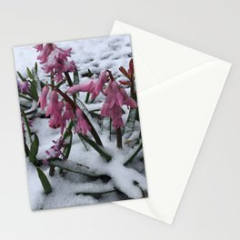 Wood Hyacinths in Snow Stationery Cards
