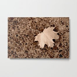 Fall Maple Leaf Metal Print