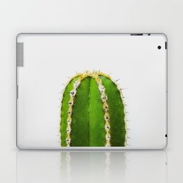 Mexico 58 Laptop & iPad Skin