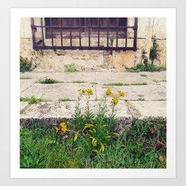 The Flower Lane Art Print