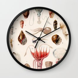 Adolphe Millot - Mollusques 01 - French vintage zoology illustration Wall Clock