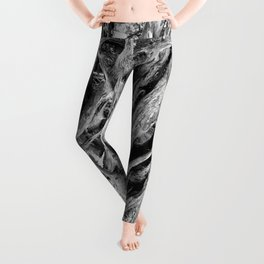 Brachial Leggings