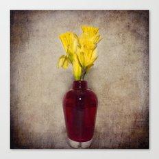 Daffodil Still Canvas Print