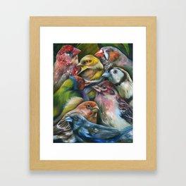 Finch Fiesta Framed Art Print